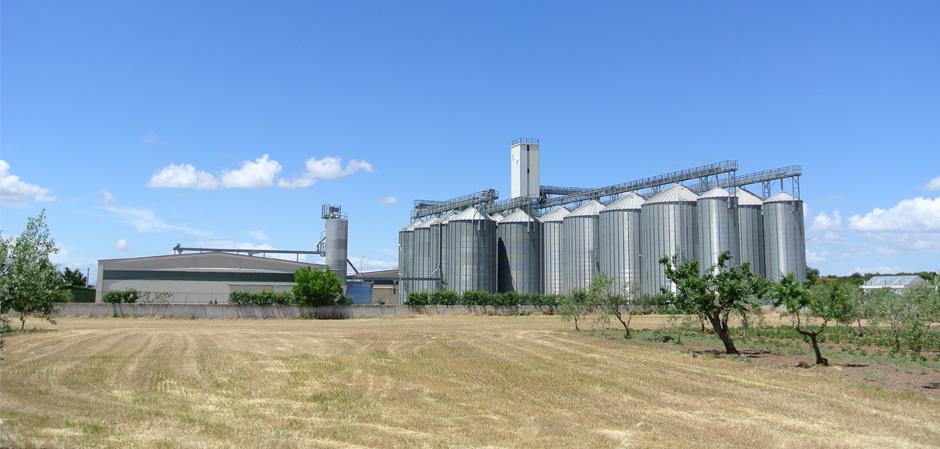 cerealsud campi